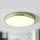 Metal Disk Flush Mount Lighting Macaron White/Gray/Green LED 16.5