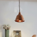 1 Light Metal Pendant Fixture Industrial Rust Barn Indoor Hanging Light Kit with Caged