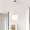 Globe Ceiling Lamp Modernism Milky Glass 1 Head 6