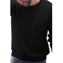 Simple Style Men's Plain Long Sleeve Round Neck Basic Pullover Knitted Sweater