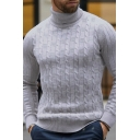 Metrosexual Men's Plain High Neck Long Sleeve Cable Knitted Slim Fit Pullover Sweater