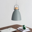 Nordic Dome Hanging Lighting Metal 1 Bulb Suspension Pendant Light in Grey with Wood Cap