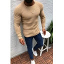 Virile Men's Plain Long Sleeves Round Neck Slim Fit Knitted Sweater for Fall Winter