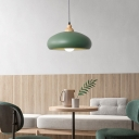 Dome Metal Pendant Lamp Contemporary 1 Head Grey/Green/Pink Hanging Light Kit with Wood Cap