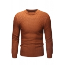 Mens Stylish Plain Waffle Knitted Long Sleeve Round Neck Slim Fit Pullover Sweater