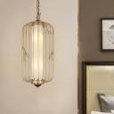 Metal Birdcage Hanging Light Fixture Vintage 2 Lights Dining Room Ceiling Pendant in Gold