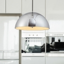 Hemisphere Hanging Light Modernism Metal 1 Head 12