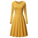 Formal Plain Long Sleeve Round Neck Plain Midi Pleated A-Line Dress for Ladies