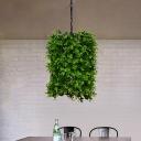 Metal Green Hanging Lamp Plant 1 Light Vintage Suspension Pendant for Restaurant