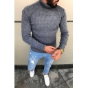 Winter Casual Plain Turtle Neck Long Sleeve Fitted Slim Ribbed Knit Pullover Sweater