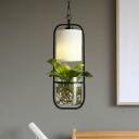 Industrial Plant Deco Pendant Light Kit 1 Head Metal Hanging Light Fixture in Black