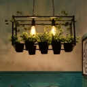 Industrial Rectangle Island Light Fixture 2 Bulbs Metal LED Ceiling Suspension Lamp in Black with Plant