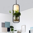 Capsule Bedroom Pendant Light Kit Industrial Metal 1 Head Black Suspension Light with Plant Decoration