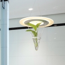 Led Pendant Light Industrial Disk Acrylic Ceiling Light with Plant Deco in White, White/3 Color Light