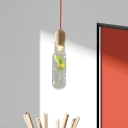 Beige Bottle Suspension Lamp Industrial Clear Glass 1 Head Dining Room Ceiling Pendant with Plant Deco