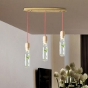 Wood 3/6 Bulbs Cluster Pendant Antique Metal Bottle LED Ceiling Lamp with Plant for Living Room