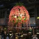 Blossom Restaurant Chandelier Lighting Fixture Industrial Metal 3 Bulbs Pink LED Drop Lamp