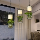 3 Bulbs Metal Multi Light Pendant Industrial Black Cylindrical Restaurant Plant Suspension Lighting with Round/Linear Canopy