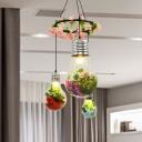 Black 3 Heads Cluster Pendant Industrial Clear Glass Bulb Shape LED Flower Suspension Light for Restaurant