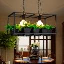 2 Lights Rectangle Island Light Industrial Black/White Metal LED Plant Hanging Lamp for Restaurant, 21.5