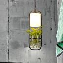 Metal Black Pendant Light Kit Capsule Single Head Industrial Ceiling Light with Plant Decoration