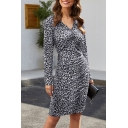 Elegant Ladies Long Sleeve V-Neck Leopard Printed Mid Shift Dress