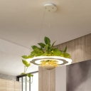 Led Acrylic Hanging Lamp Kit Industrial White Round/Flower Dining Room Pendant Light with Plant Decoration, Warm/White/3 Color Light