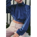 Trendy Street Long Sleeve Mock Neck Metallic Relaxed Fit Crop Sweatshirt Top for Women