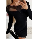 Sexy Pretty Black Long Sleeve Round Neck Mesh Panel Lace Trim Zipper Hem Mini Bodycon Dress for Ladies