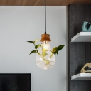 1 Head Clear Glass Pendant Ceiling Light Industrial Black Bulb Indoor Hanging Lamp with Plant Deco