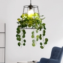 1 Light Metal Hanging Lamp Vintage Black Barrel Restaurant LED Suspension Pendant with Plant Decoration