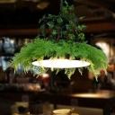 Barn Restaurant Ceiling Pendant Light Industrial Metal 1 Light Black LED Plant Suspension Lamp, 14