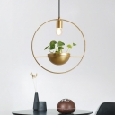 Circle Restaurant Pendant Lighting Industrial Metal 1 Bulb Gold Plant Hanging Light Fixture