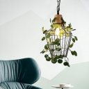 Black Cage Pendant Lighting Fixture Industrial Metal 1 Head Restaurant LED Hanging Ceiling Light with Plant