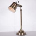 Bell Study Room Desk Lighting Antiqued Metal 1 Bulb Silver Finish Adjustable Reading Book Lamp