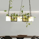 Black 5 Heads Hanging Ceiling Light Farm Clear and Milk Glass Planter Box Pendant Light