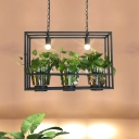 3-Bulb Island Light Fixture Industrial Black Rectangle Cage Restaurant Pendant with Clear Glass Plant Cup