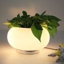 Frosted White Glass Round Vase Night Lamp Modern 1 Bulb 11