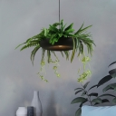 Rural Fern Plant Pendant Light Fixture Single Bulb Iron Hanging Lamp in Black and Green