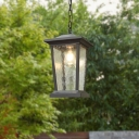 Clear Ripple Glass Pavilion Ceiling Light Cottage 1-Bulb Outdoor Hanging Pendant in Black