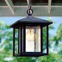 Lantern Shape Clear Bubble Glass Hanging Ceiling Light Rustic 1 Head Corridor Drop Pendant in Black