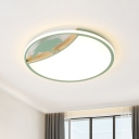 Disc Ultrathin LED Ceiling Lamp Nordic Acrylic Grey/White/Green Flush Mounted Light with Bird Decor