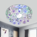 Halo Clear Crystal Flush Light Simplicity LED Corridor Ceiling Lighting with Fish Design
