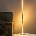 Modern Spiral Line Floor Lighting Acrylic LED Bedroom Standing Floor Lamp in Silver/Black, White/Warm/Natural Light