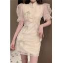 Womens Vintage Leaf Embroidered Sequined Sheer Mesh Puff Sleeve Mandarin Collar Bow Tied Panel Beading Detail Short A-line Dress in Apricot