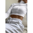 Edgy Girls Solid Color Knit Long Sleeve Stand Collar Zip up Fitted Cropped T-shirt