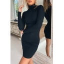 Sexy Womens Long Sleeve Turtleneck Solid Color Mini Tight T-shirt Dress in Black