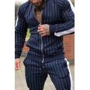 Dressy Mens Sweatshirt Striped Pattern Colorblock Pocket Tape Full Zipper Long Sleeve Stand Neck Regular Fitted Sweatshirt