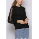 Popular Sheer Mesh Patchwork Lace Round Neck Short Sleeve Regular Fit Pullover Knitwear Top for Women