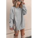 Womens Stylish Solid Color Long Sleeve Crew Neck Mini Shift Sweatshirt Dress